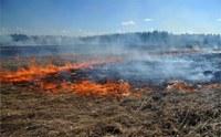На территории Агаповского муниципального района введен особый противопожарный режим