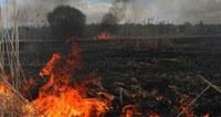 Обстановка с пожарами за первое полугодие 2021 года