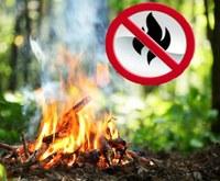 Пожарная безопасность в лесах. Ответственность за совершенные административные правонарушения и уголовные преступления в указанной сфере.