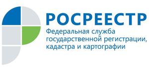 """Управление Росреестра применяет закон о """"лесной амнистии"""" в отношении каждого конкретного земельного участка"""