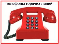 Телефоны горячих линий